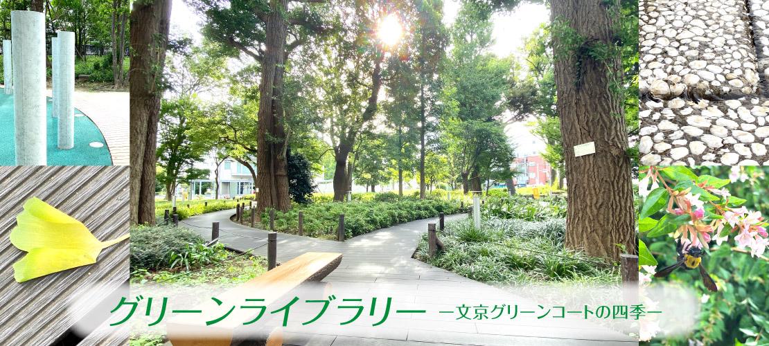 2108_green_banner_1110-500